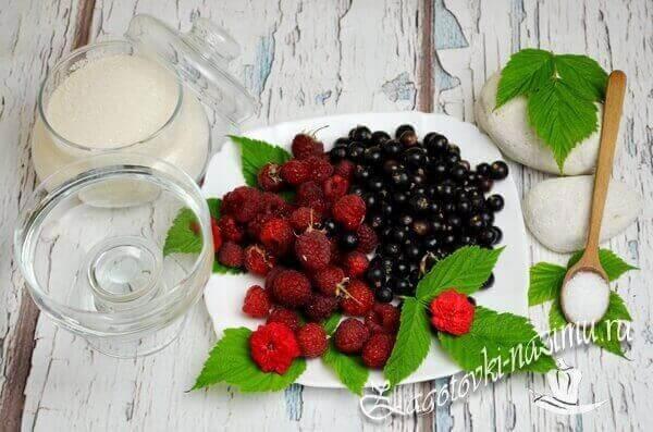 Продукты для компота из черной смородины на зиму