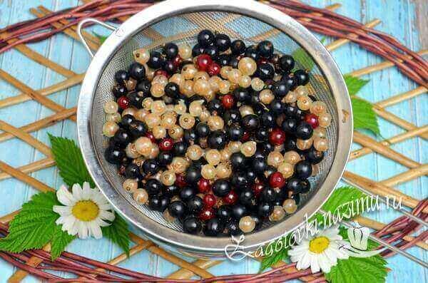 ягоду снять с веточек и помыть