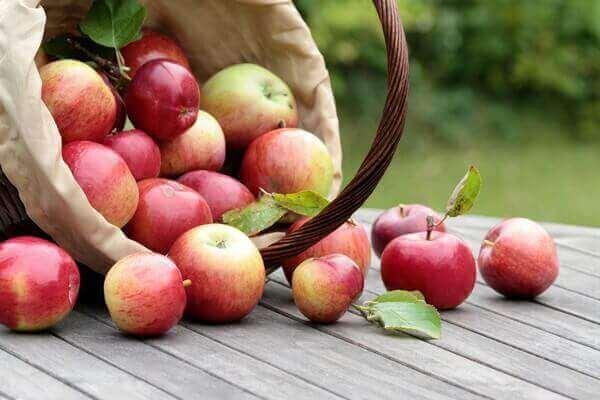 Как праздновать Яблочный Спас