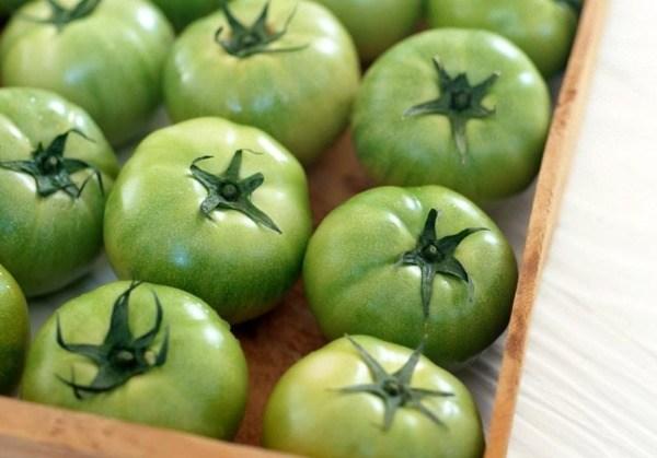 Хранение зеленых помидор
