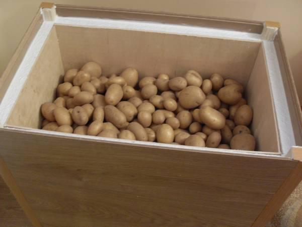 какую картошку можно хранить в квартире
