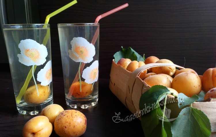 компот с косточками из абрикос