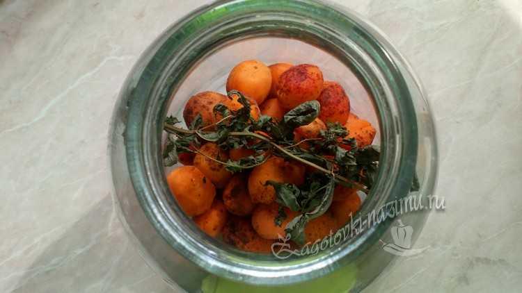 абрикосы и мята в банке