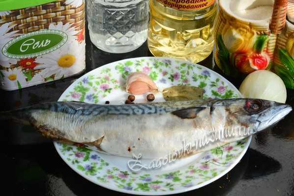 ингредиенты для маринования скумбрии