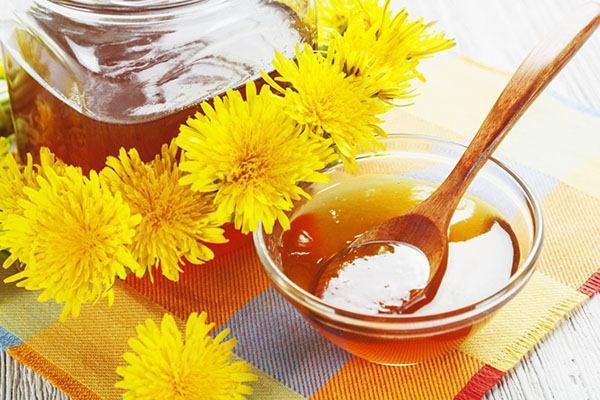 Целебные свойства одуванчикового меда